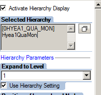 Hierarchy selection for a BEX query in the query designer